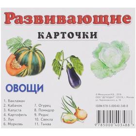 Развивающие карточки. Овощи. Меньшиков И.Б.
