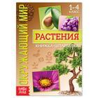 Книжка-шпаргалка «Окружающий мир. Растения», 12 стр.