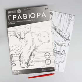 Гравюра «Медведица и медвежонок» A4, с металлическим серебряным эффектом