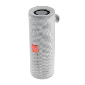 Портативная колонка Aria SK1017GY, microSD/USB/FM, Bluetooth 5.0, 2х5 Вт, 1200 мАч, серая