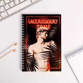 Ежедневник Introvert zone: А5, 60 листов Ош