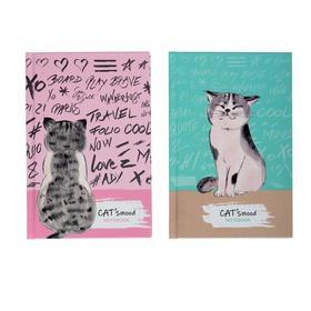 Бизнес-блокнот А6, 64 листа в клетку Cat&Mood, твёрдая обложка, матовая ламинация, МИКС