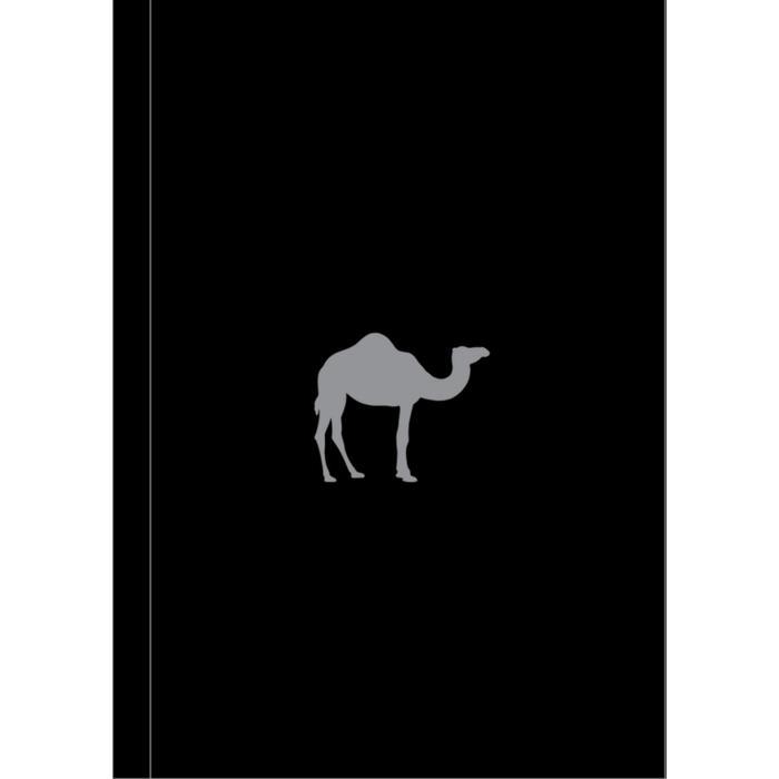Boy's Toys (Camel Note)