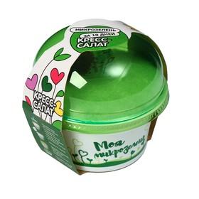 Набор для выращивания, кресс-салат, «Моя микрозелень»