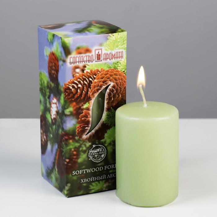 """Свеча ароматическая """"Хвойный лес"""", 4×6 см, в коробке"""