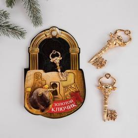Ключ на открытке 'Золотой ключик' 3,5 х 7,5 см Ош