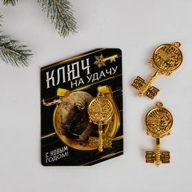 Сувенирный ключ на открытке «На удачу», 7 х 10 см Ош