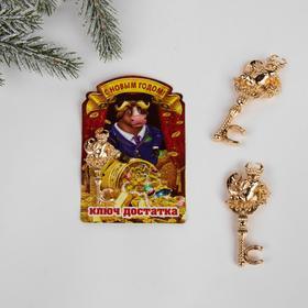 Сувенирный ключ на открытке «Ключ достатка», 7 х 10 см