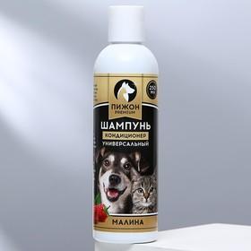 Шампунь-кондиционер 'Пижон Premium' для кошек и собак, с ароматом малины, 250 мл Ош