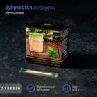 Зубочистки из берёзы Magistro, 500 шт, ментоловые, в индивидуальной упаковке, картонная коробка