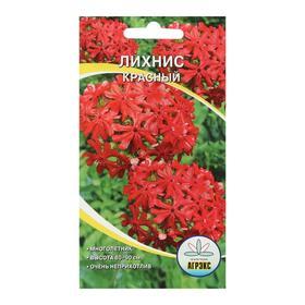 Семена цветов многолетние Лихнис Красный 0,1