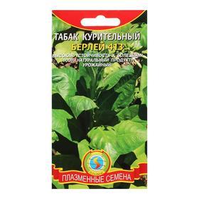 Семена Табак курительный 'Берлей 413' Ош