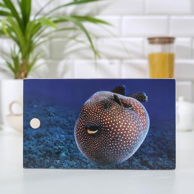 Доска разделочная «Рыбка Фугу», 15×25 см