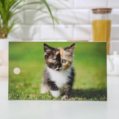 Доска разделочная «Котёнок Мартин», 15×25 см - Фото 1