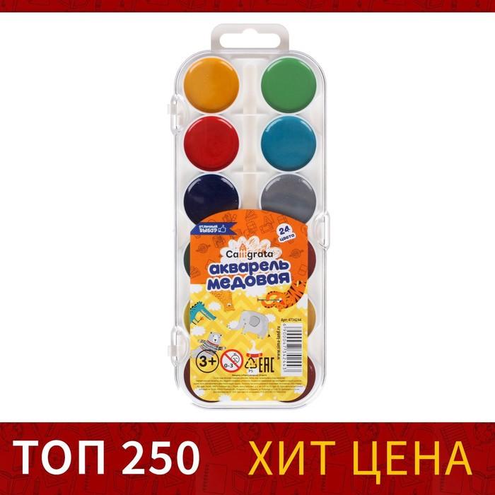 Акварель 24 цвета Calligrata, медовая, без кисти, пластик