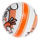 Мяч диаметр 75 мм, с рисунком - Фото 2