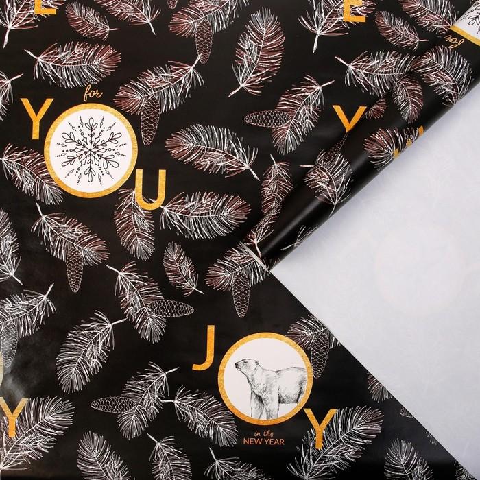 Бумага упаковочная глянцевая Joy, 70 × 100 см