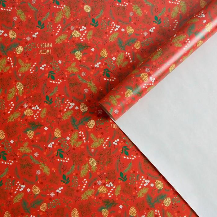 Бумага упаковочная глянцевая «Европейский стиль», 70 × 100 см