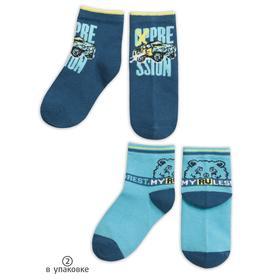 Носки для мальчиков, размер 12-14, цвет синий, голубой, 2 шт в наборе