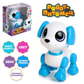 Робот-собака «Питомец: Щеночек», световые и звуковые эффекты, работает от батареек, цвет голубой