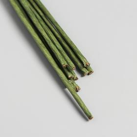 Набор проволоки для флористики d-2 мм, 60 см, 10 шт, зелёный