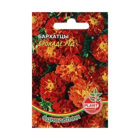 Семена цветов Бархатцы 'Брокаде ред', 0,1 г Ош