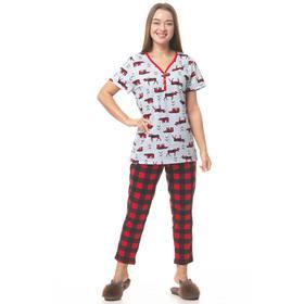 Пижама женская (бриджи, футболка) цвет МИКС, размер 46