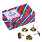 Кнопки канцелярские омедненные 9.5 мм, 100 штук, Attomex, в картонной коробке