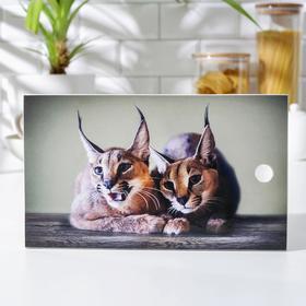 Доска разделочная «Рысята», 15×25 см