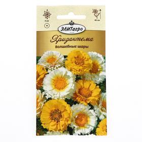 """Семена цветов  Хризантема """"Волшебные Шары"""", махр.смесь, 0,2 г"""