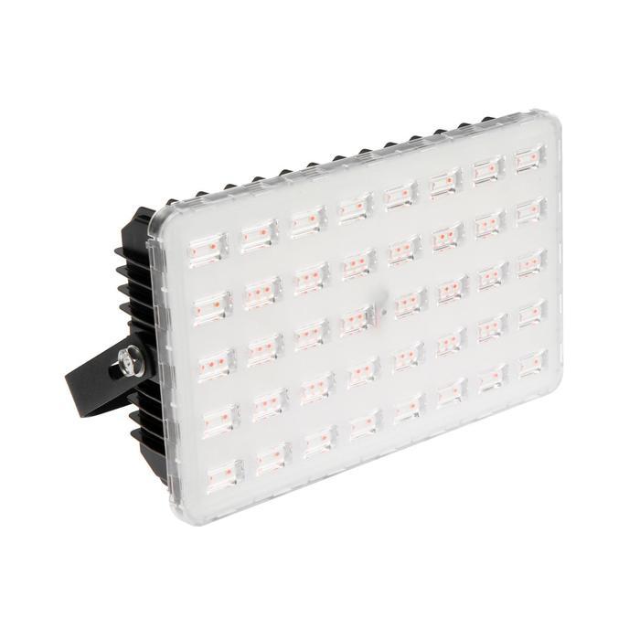 Прожектор ФИТО светодиодный Luazon Lighting, для растений, 100 Вт, IP65, 220В
