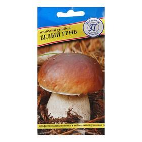 Мицелий грибов Белый гриб,  60 мл Ош