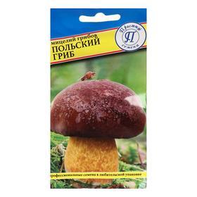 Мицелий грибов Польский гриб,   60 мл Ош