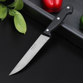 Нож кухонный «Европа», универсальный, лезвие 16 см