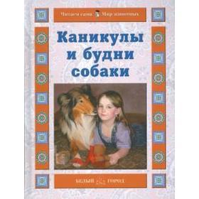 Каникулы и будни собаки. Ермильченко Н.