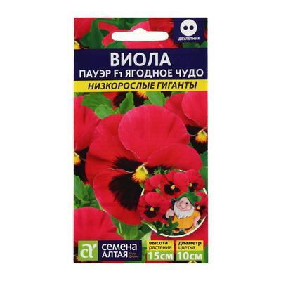 """Семена цветов  Виола Пауэр """"Ягодное чудо"""", низкорослые гиганты, F1,  5 шт - Фото 1"""