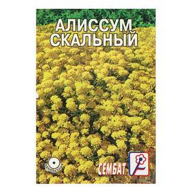 Семена цветов Алиссиум 'Скальный желтый', 0, 1 г Ош