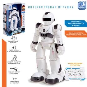 Робот-игрушка радиоуправляемый IQ BOT GRAVITONE, русское озвучивание, цвет серый
