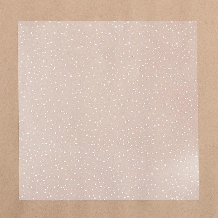 Ацетатный лист с фольгированием «Серебряное сияние», 20 х 20 см