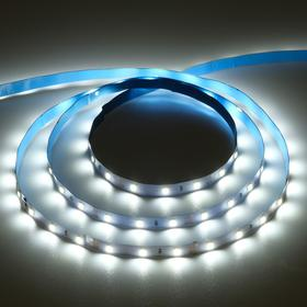 Светодиодная лента на катушке Ecola LED strip PRO, 8 мм, 12 В, 6000 К, 4.8 Вт, IP20, 5 м