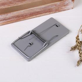 Крысоловка, 15 × 7,5 см, пластик Ош