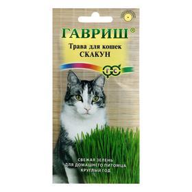 Семена Трава для кошек 'Скакун', 10 г Ош