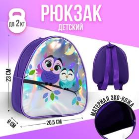 Рюкзак детский «Совушки», 23х20,5 см Ош