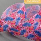 Лента репсовая «Перо», 25 мм, 2 ± 0,1 м, цвет разноцветный