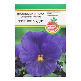 Семена цветов Фиалка Виттрока 'Горное чудо', 0,07 г Ош