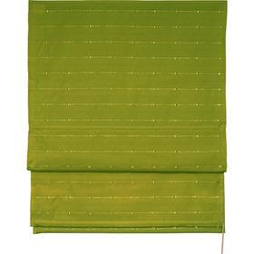 Римская штора «Терра», размер 80х160 см, цвет зелёный Ош