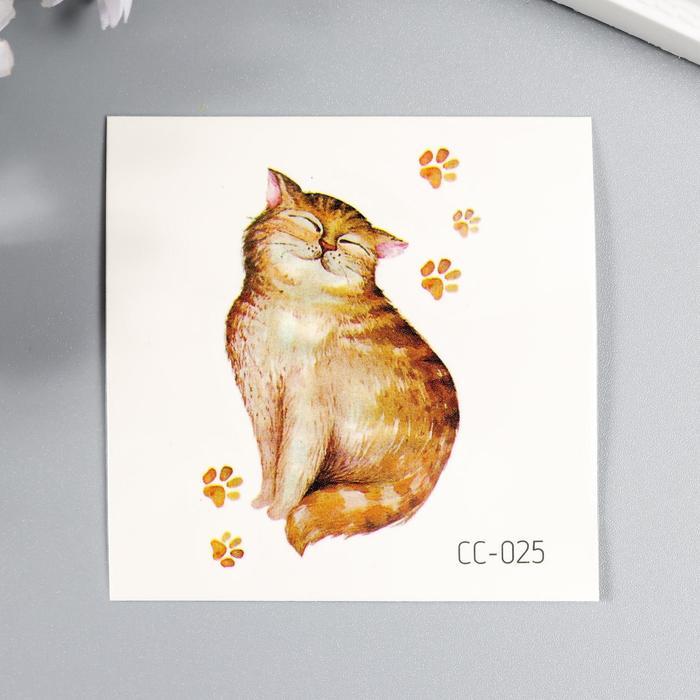 Татуировка на тело цветная Толстый кот и следы 6х6 см