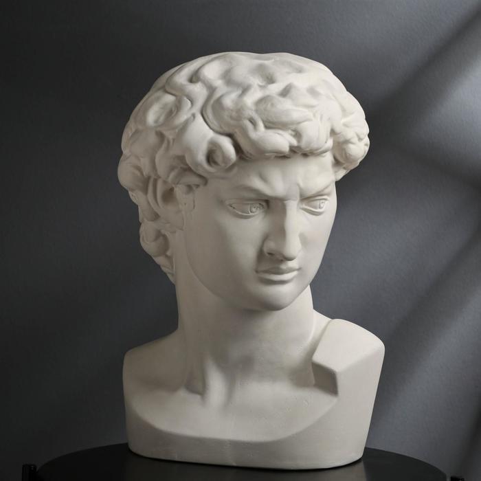 "Гипсовая фигура ""Голова Давида"" 30х30х45 см, белая"