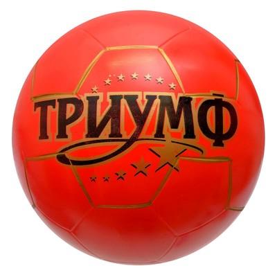 Мяч «Триумф», диаметр 200 мм, МИКС - Фото 1