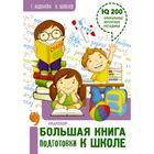 Большая книга подготовки к школе. Шевелев К. В., Абдулова Г. Ф.